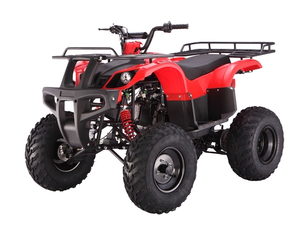 150cc, Utility Body, Automatic w/ Reverse, Electric Start, Front Drums, Rear Disc, Front & Rear Racks